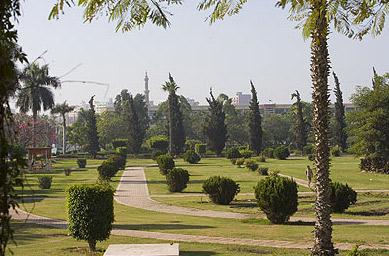 The gardens of the university at Mansura