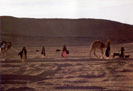 Traveling Bedouins