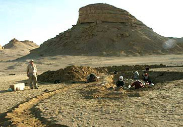 Geological digging site in Wadi Hitan