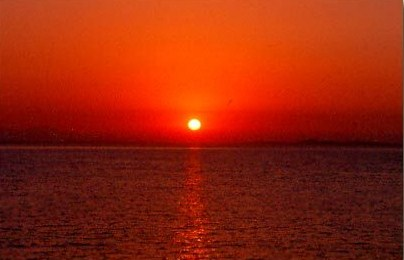 view of red sea in sunset