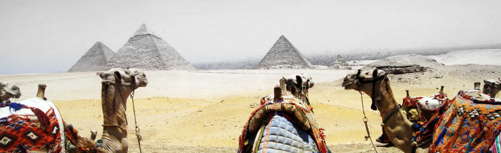 Enjoy a Camel Ride Around History Visit the Pyra